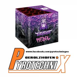 Rebel 12er VE