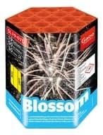 Gaoo Blossom Batteriefeuerwerk