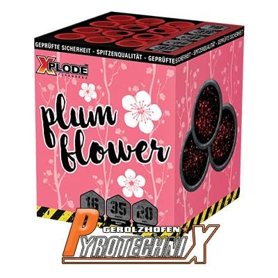 Xplode Plum Flower Batteriefeuerwerk 16 Schuss